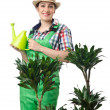 Stock Photo: Woman watering plants on white