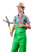 Man gardener with shears on white — Stock Photo