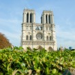 Notre Dame de Paris cathedral in summer day - Stock Photo