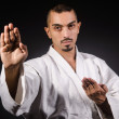 Stock Photo: Karate martial arts fighter