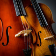 Violin in dark room  - music concept — Stock Photo