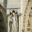 Elements of Notre dame cathedral — Photo