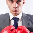 Young businessman with boxing gloves — Stock Photo #24771925