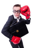 Businesswoman in boxing concept on white — Foto de Stock