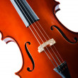 Violin isolated on the white background — Stock Photo