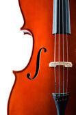 Violino isolado no fundo branco — Fotografia Stock