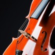 Violin on the black background - Stock Photo