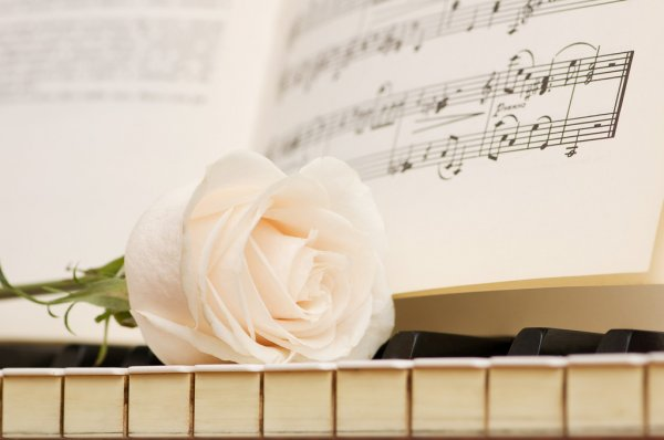 Romantic concept - rose on piano — Stock Photo #2604179
