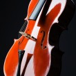 Violin on the black background — Stock Photo