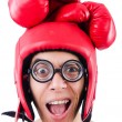 Funny boxer isolated on the white background — Stock Photo