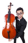 Funny man with violin on white — Foto Stock