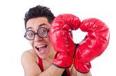Boxeador gracioso aislado sobre el fondo blanco — Foto de Stock