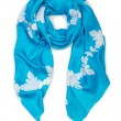 Warm blue scarf — Foto de Stock