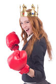 Queen boxer businesswoman isolated on white — Stock Photo