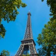 Eiffel tower on bright summer day — Stockfoto