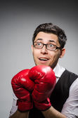 Funny boxer businessman in sport concept — Stockfoto