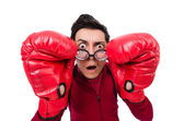 Businessman with boxing gloves — Foto de Stock