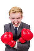 Funny boxer businessman — Stock Photo