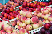 Nectarines and peaches — Foto de Stock