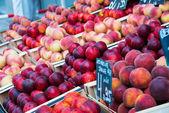 Los nectarines y duraznos — Foto de Stock