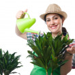 Woman watering plants — Stock Photo