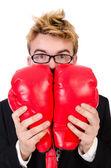 Jonge zakenman bokser — Stockfoto