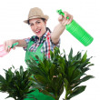 Woman watering plants — Stock Photo #46649611