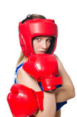 боксер женского пола — Стоковое фото