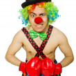 Clown with boxing gloves — Stock Photo