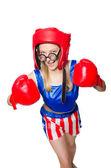 Boxer femelle — Photo