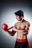 Muscular boxer — Stock Photo