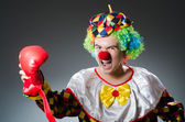 Clown with box gloves — Stock Photo