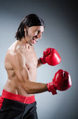 Martial arts fighter — Stock Photo
