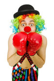 Clown with boxing gloves isolated on the white — Stock Photo