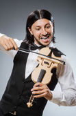 Funny fiddle violin player in musical concept — Stockfoto
