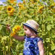 Girl in dark blue and sunflowers — Stock Photo #12757983