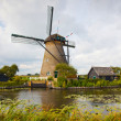 Windmill in Kinderdijk — Stock Photo