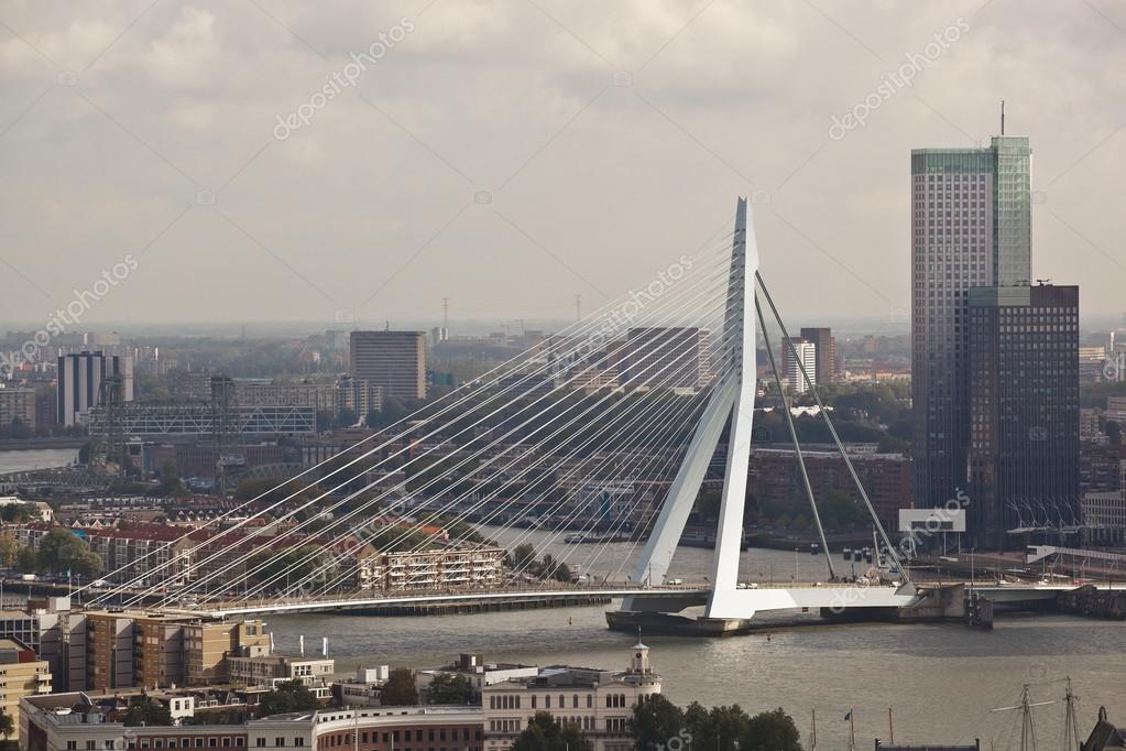 Erasmus bridge. Rotterdam. Holland — Stock Photo #13707079