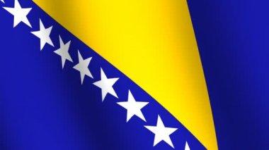 Waving flag of Bosnia and Herzegovina — Stock Video