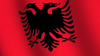 Waving flag of Albania — Video Stock