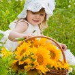 Little girl with a basket with sunflowers — Stock Photo #23385500