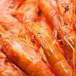 Many fresh shrimps on market counter — Stock Photo