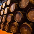Cellar with wine barrels — Foto Stock