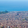 Barcelona. Spain. View of the city from the top. — Stock Photo