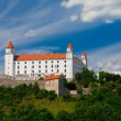 Old Castle in Bratislava on a Sunny Day  — Photo