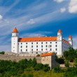 Old Castle in Bratislava on a Sunny Day  — Foto de Stock