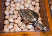 Round Belgian chocolates in the store — Stock Photo