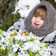 图库照片: Little girl in a winter wood with the big basket of snowdrops
