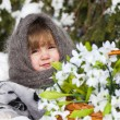 Little girl in a winter wood with the big basket of snowdrops — Stock fotografie #37401183