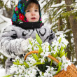 Little girl in a winter wood with the big basket of snowdrops — Stock Photo #37401239